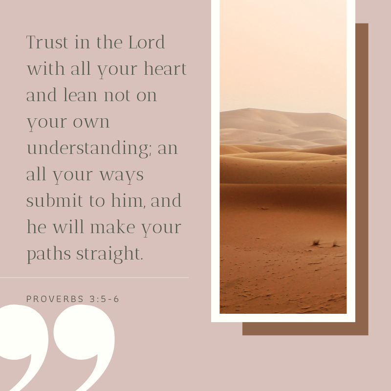 proverbs Bible verses about trust